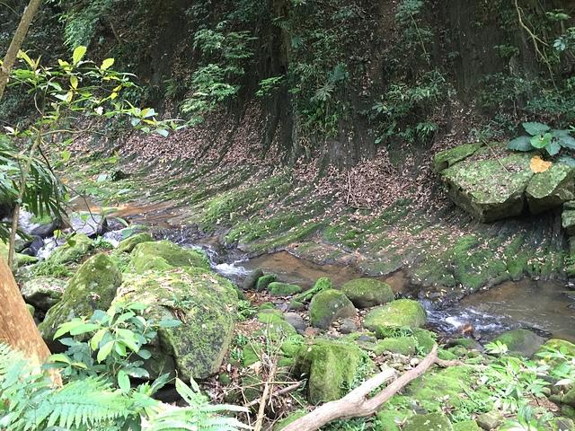 24-2順斜河的地質岩層走向.jpg - 大溝溪親水公園、圓覺寺步道