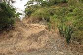 台東石頭山:廢棄的小產道
