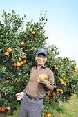 本站人氣百萬誌喜:A1峨眉採橘4.jpg