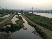 新月橋夜拍:14新海人工濕地.jpg