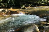 金瓜寮溪魚蕨步道:溪水