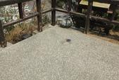 台東鯉魚山:導線點觀景台