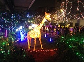 2013台北燈會:IMG_0127.JPG