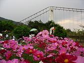 20070222茶山吊橋風吹沙紅柴坑貓鼻頭:滿洲茶山吊橋5.jpg