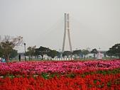 幸福水漾公園、婚紗廣場:01新北大橋3.jpg