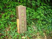 20070420福山賞蝶:IMG_6775.jpg