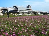 大台北都會公園:機場捷運三重站6.jpg
