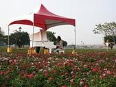 幸福水漾公園、婚紗廣場:19愛情樂章1.jpg