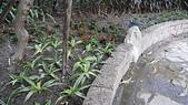 水花園社區隨拍:園藝認養成果2