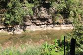 金瓜寮溪魚蕨步道:河床裸露岩的故事