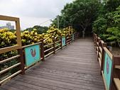 大直雞南山自然園區:雞南山公園09.jpg