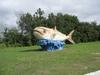 十七公里海岸--上岸的魚