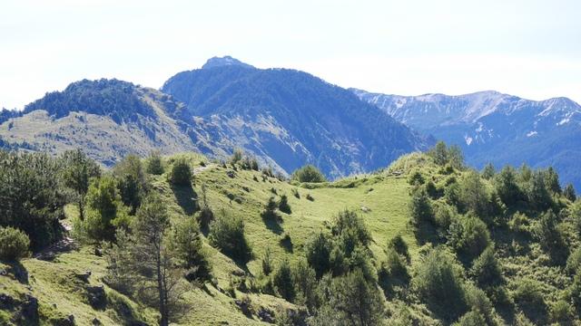 11麟趾山回程所見的步道及草坡.jpg - 麟趾山步道