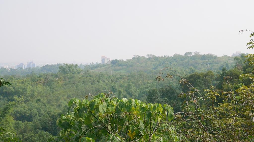 21南尚書林山 半仙觀景台所見2.jpg - 鳳凰山(尚書林一等)