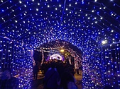 2013台北燈會:IMG_0118.JPG
