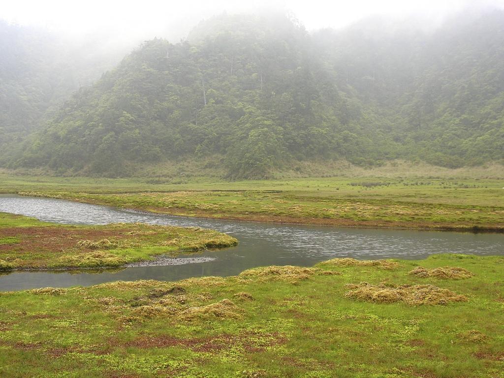 巴棲松縱走:48松羅湖8.jpg