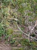 南港山峭壁總覽:59五號峭壁第三段.jpg