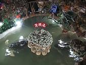 澎湖基石之旅:竹灣大義宮地下洞穴