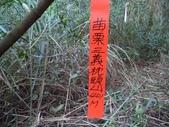 登山健行:DSC07198枕頭山.JPG