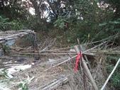 休閒旅遊:DSC03722樟樹林山.JPG