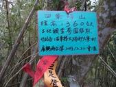 休閒旅遊:DSC04062四寮坪山.JPG