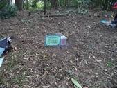 休閒旅遊:DSC03738樟樹林山.JPG