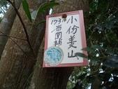 休閒旅遊:DSC03666小份坑山.JPG