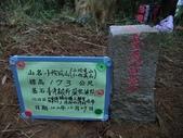 休閒旅遊:DSC03688小份坑山.JPG
