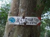 休閒旅遊:DSC03668小份坑山.JPG