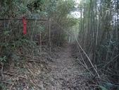 休閒旅遊:DSC04020四寮坪山.JPG