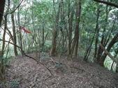 休閒旅遊:DSC03968老雞山.JPG