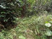 休閒旅遊:DSC03910老雞山.JPG