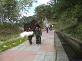 休閒旅遊:DSC03002郊遊野餐.JPG