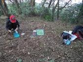 休閒旅遊:DSC03750樟樹林山.JPG