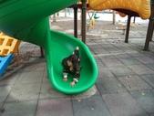 休閒旅遊:DSC03028郊遊野餐.JPG