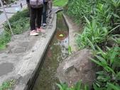 登山健行:IMG_5166水往上流.JPG
