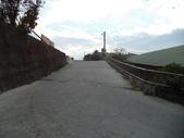 休閒旅遊:DSC03712樟樹林山.JPG