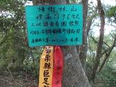 休閒旅遊:DSC03758樟樹林山.JPG