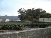休閒旅遊:DSC03716樟樹林山.JPG