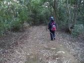 登山健行:DSC07178枕頭山.JPG