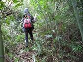休閒旅遊:DSC03952老雞山.JPG