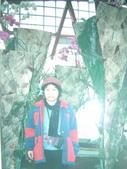 彰化花博會.鹿港.八卦山等文化古蹟.燈會.風景區..:彰化花卉博覽會 024.jpg