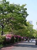 20090429_甜蜜京阪行Day1_大阪城+難波道頓崛美食朝聖:DSCN9550.JPG