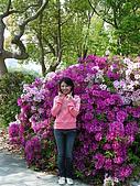 20090429_甜蜜京阪行Day1_大阪城+難波道頓崛美食朝聖:DSCN9553.JPG
