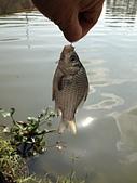 釣魚記:2014年12月30日年終封關宜蘭縣釣魚記 004.jpg