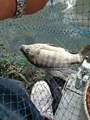 釣魚記:2014年11月26日礁溪釣魚結果是壹枝獨秀.jpg