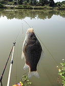 釣魚記:2014年12月30日年終封關宜蘭縣釣魚記 002.jpg