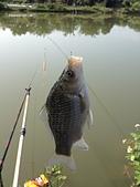 釣魚記:2014年12月30日年終封關宜蘭縣釣魚記 001.jpg