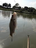 釣魚記:2014年12月30日年終封關宜蘭縣釣魚記 003.jpg