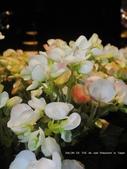 SALON DE THE de Joel Robuchon :我們坐落在位子的邊,一旁就是花朵.JPG